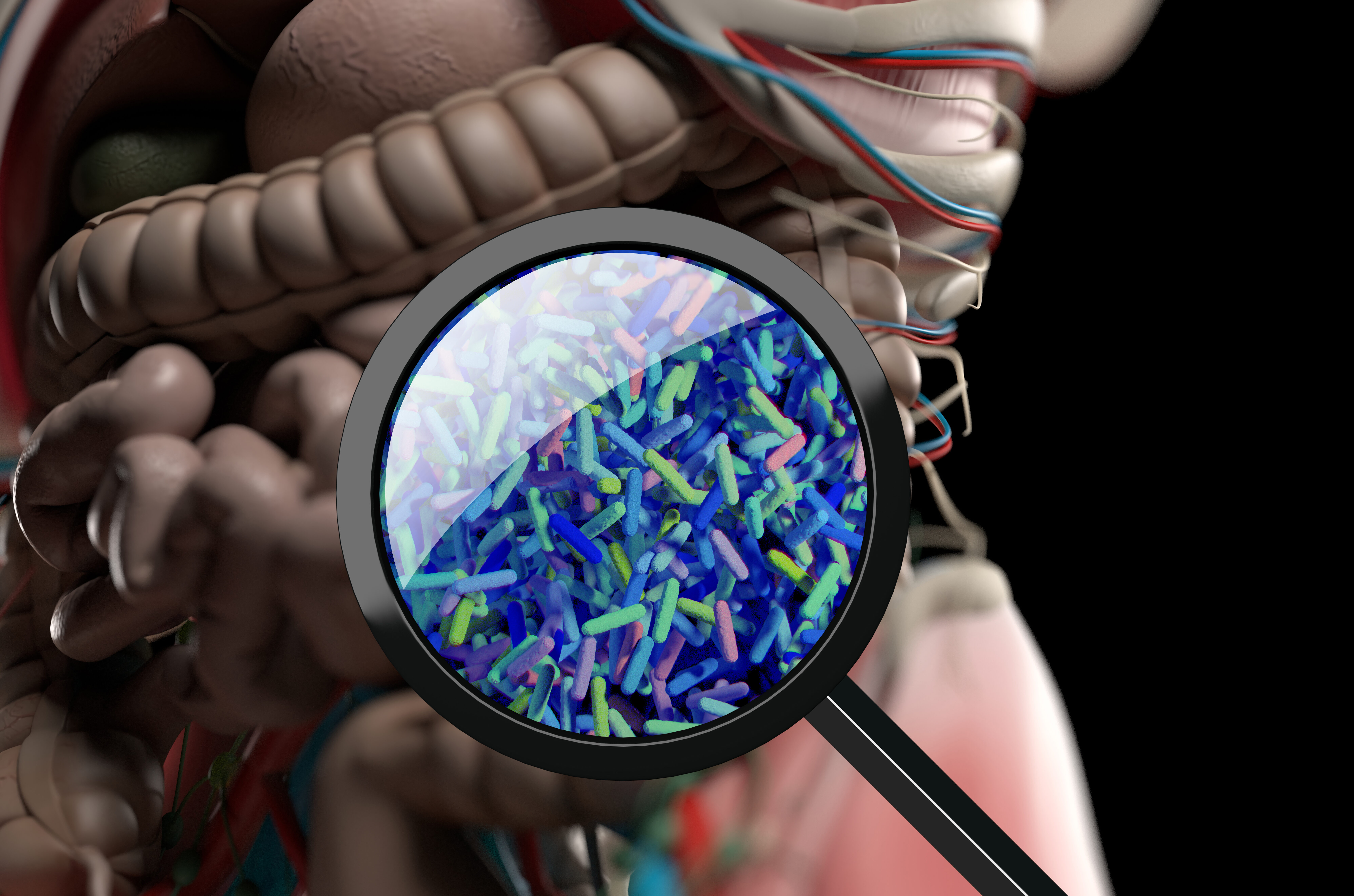 The Surprising Connection between the Gut Microbiome and Infections in other Organs