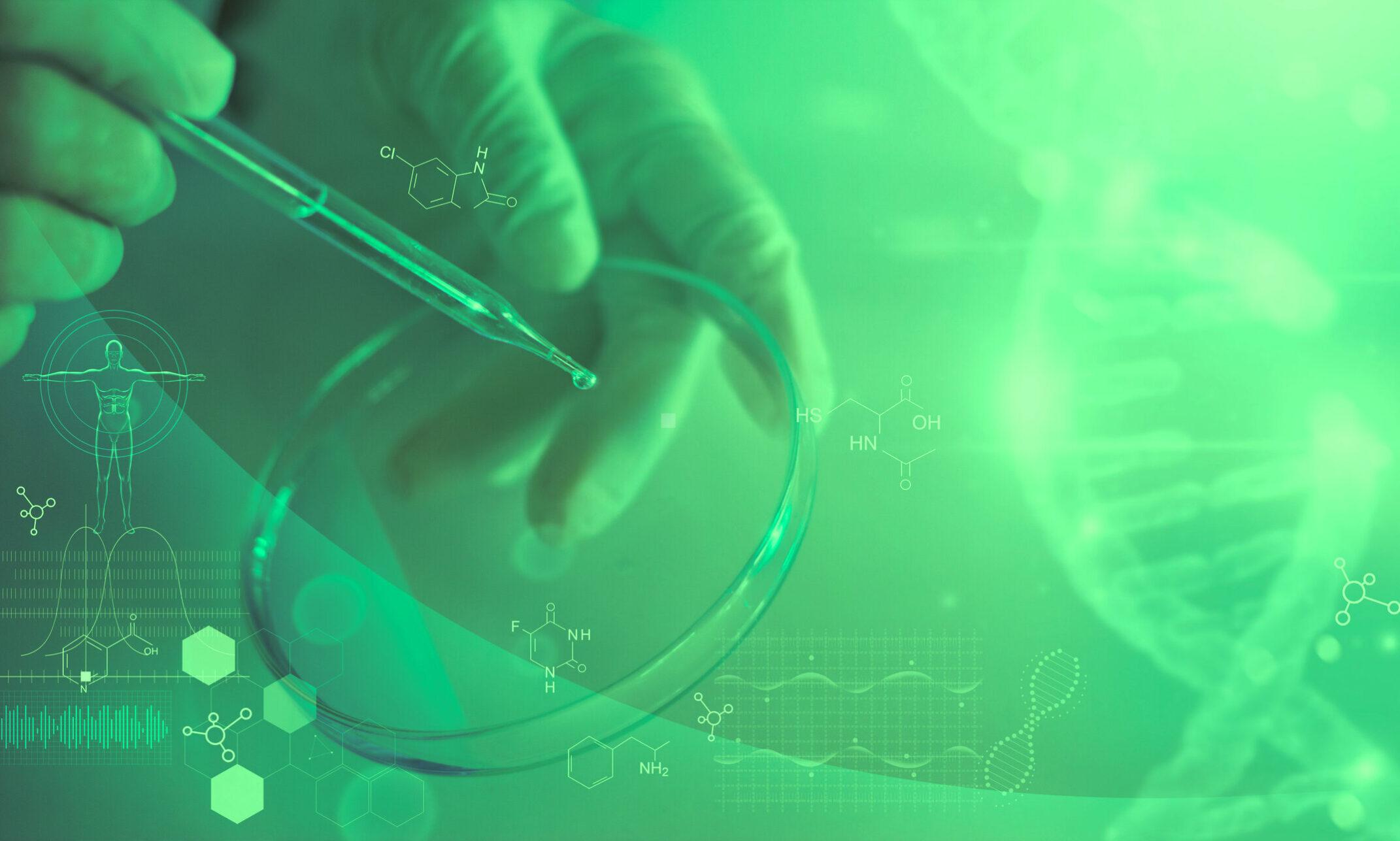 Functional Medicine in Clinical Practice – Mentorship Program for Medical Doctors