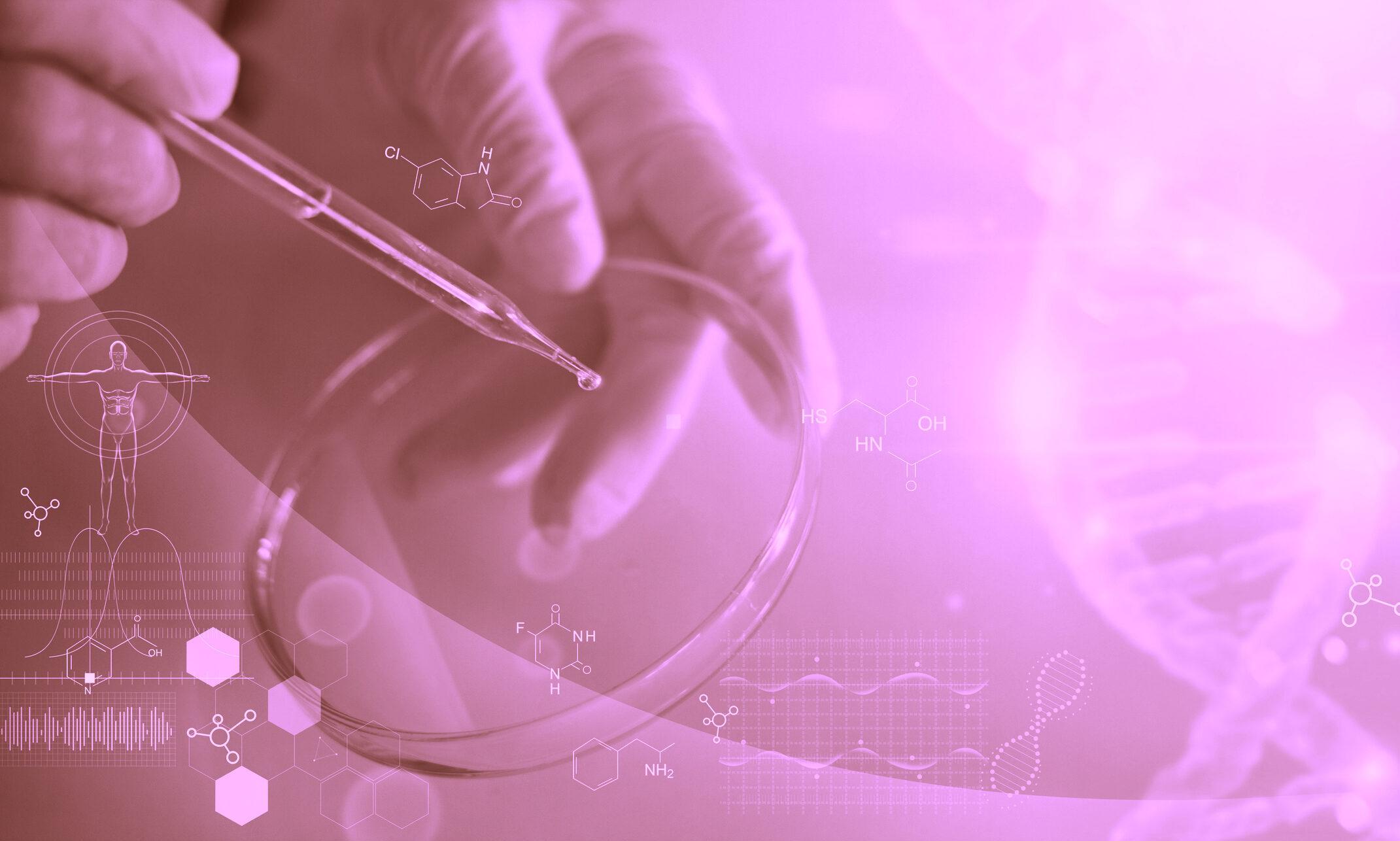 Functional Medicine in Clinical Practice – Mentorship program Level 1